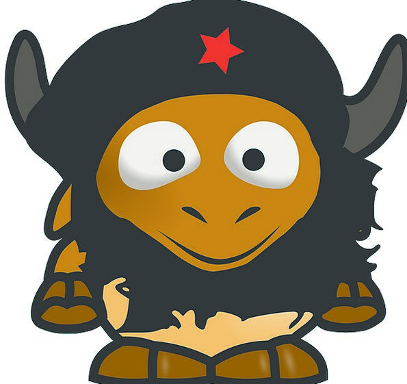 African Buffalo Bovine Stupid Cape Buffalo Cartoon