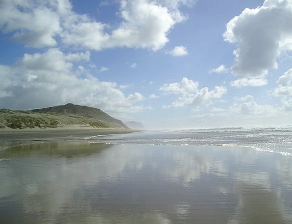 New Zealand Vacation Seashore Travel Sea Marine Be