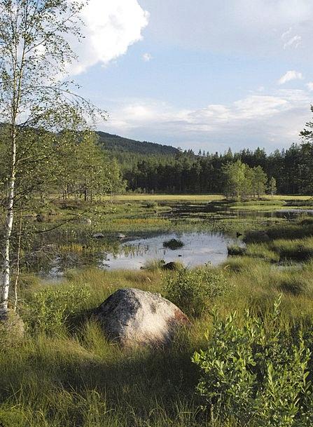 Island Isle See Understand Sweden Värmland