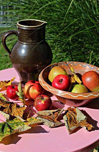 Apple Drink Fall Food Fruit Ovary Autumn Harvest C
