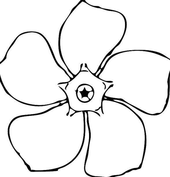 Periwinkle Floret Black And White Flower Floral Fl