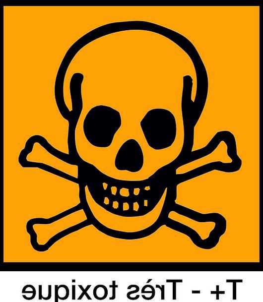 Skull Mind Ciphers Symbols Signs Label Bones Frame