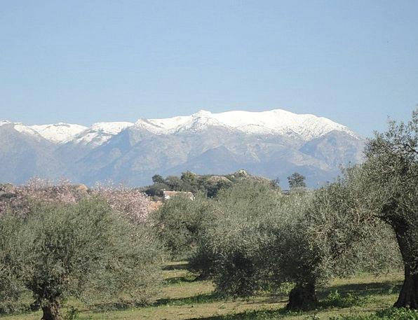 Snow Snowflake Spain The Nieves Sierra Spring Coil
