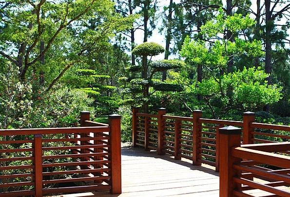 Gardens Parks Landscapes Nature Bridge Bond Japane