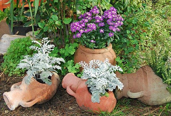 Amphorae Landscapes Soil Nature Flowers Plants Ter