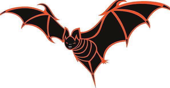 Bat Racket Bird Fowl Black Dark Vampire Parasite M