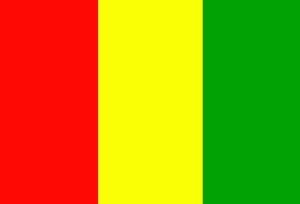 Mali Standard Country Republic Flag Nation State F