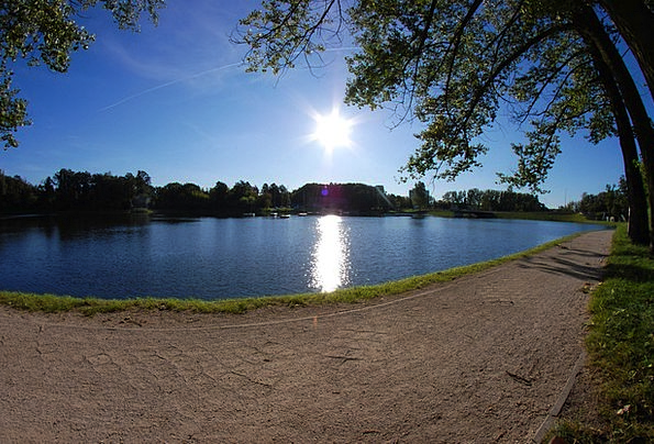 The Path Landscapes Nature Lake Freshwater The Sun