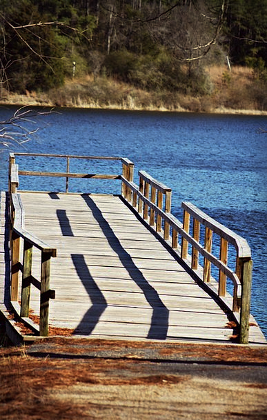 Pier Dock Timber Water Aquatic Wooden Wooden Pier
