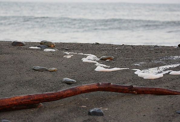 Beach Seashore Vacation Timber Travel Stones Grave