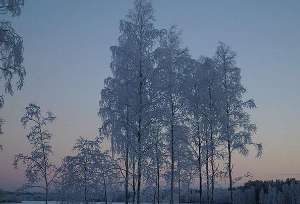 Snow Snowflake Finland Finnish