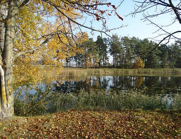 Autumn Fall Lovely Lake Freshwater Beautiful Beaut