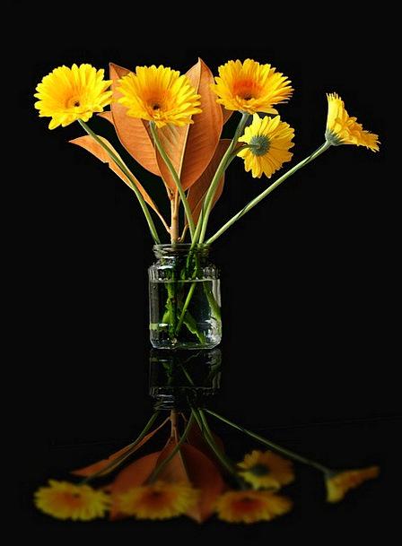 Flower Floret Landscapes Creamy Nature Vase Urn Ye