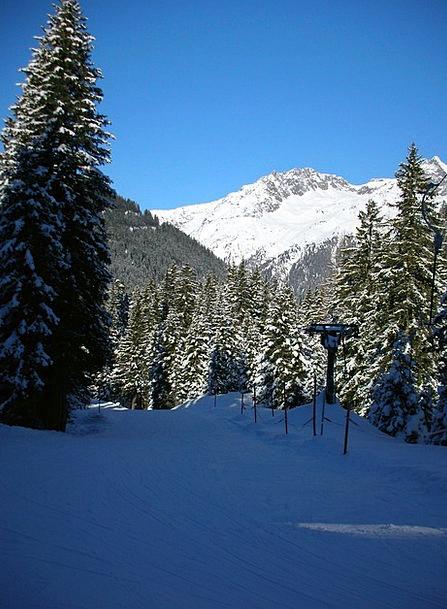 Skiing Winter Sports Ski Tour Alpine Sport Diversi