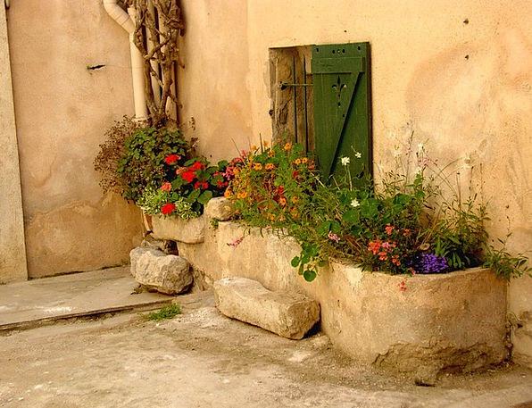 St Tropez Plants Garden Plot Flowers Planters Pots