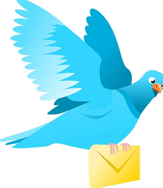 Pigeon Mark Transporter Mail Postal Carrier Icon D