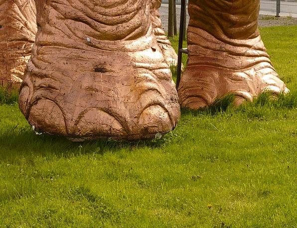 Elephant Foot Foot Base Ten Elephant Monster Dinos