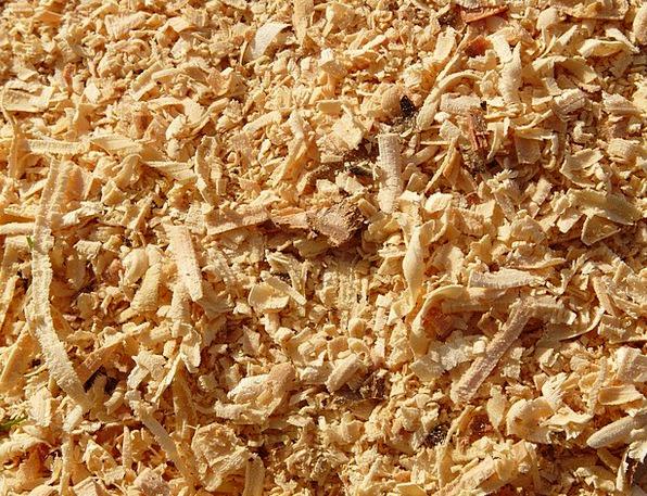 Sawdust Saying Wood Saw Woodworks Carpentries Macr