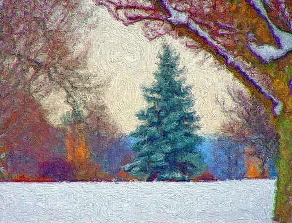 Painting Image Evergreen Immortal Art Tree Sapling