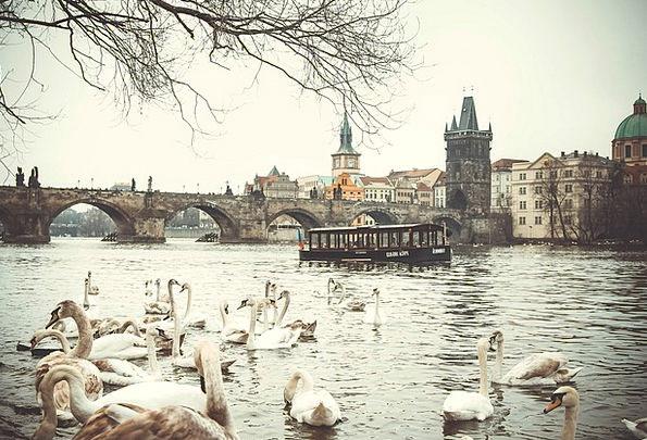 Prague Landscapes Nature Czech Republic Charles Br