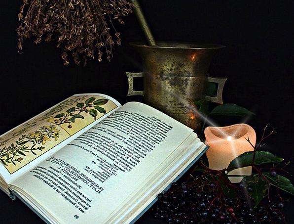 Natural Medicine Experimentation Herbs Basils Alch