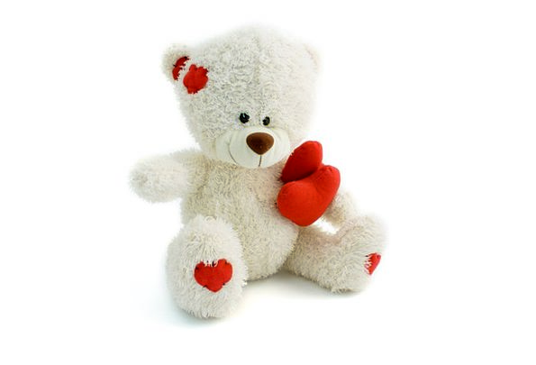 Teddy Tolerate Animal Physical Bear White Toy Doll