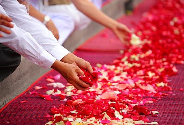Rose Petals People Public Buddhism Phra Dhammakaya