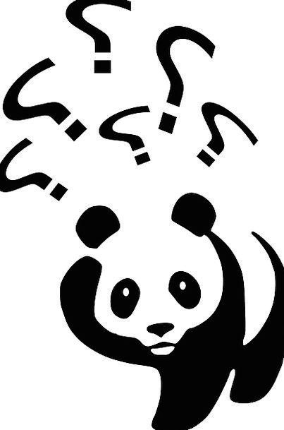 Bear Tolerate Panda Black And White Wildlife Walki