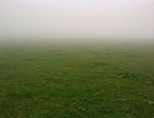 Fog Mist Field Autumn Fall Meadow Mysterious Secre