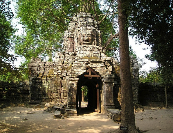 Angkor Cambodia Wat Overgrown Dense So Jungle Temp