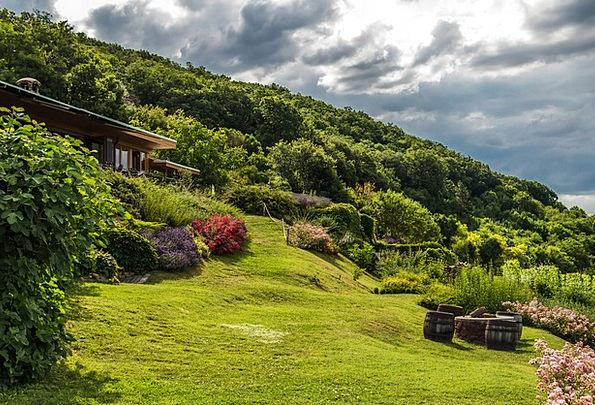 Garden Plot Landscapes Florae Nature Nature Countr