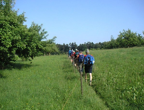 Single File Nomad Meadow Path Wanderer Frisch From