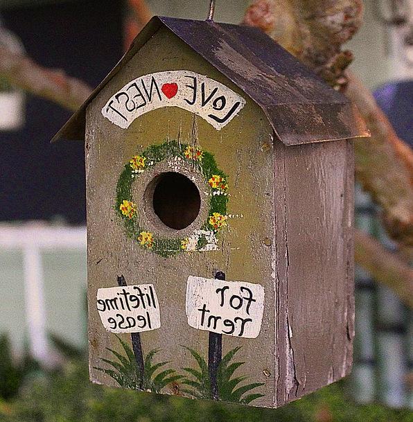 Bird House Darling Cute Attractive Love Tree Sapli