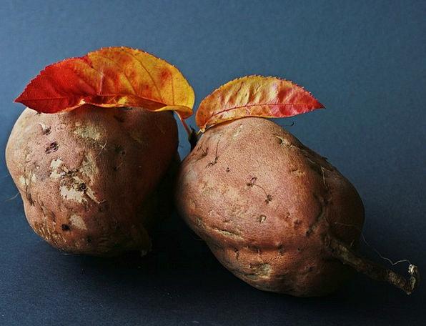 Sweet Potato Drink Vegetable Food Eat Bother Potat