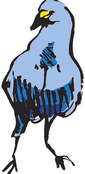 Blue Azure Fowl Standing Stand-up Bird Beak Bill F