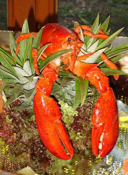Lobster Animal Physical Zehnfußkrebs Sea Animal De
