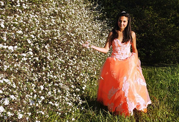 Dress Clothing Fashion Carroty Beauty Quinceanera