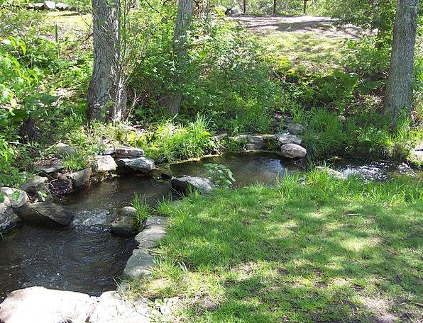Brook Watercourse Rocks Pillars Stream Shady Flowi
