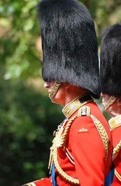 Man Gentleman Protector Uniform Unchanging Guard R