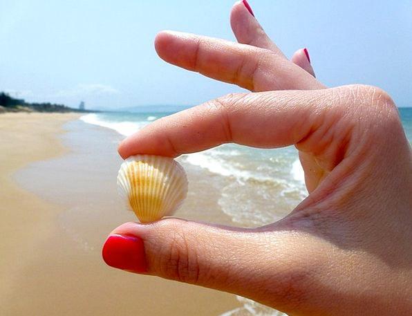 Beach Seashore Vacation Travel Toenail Seashell Th
