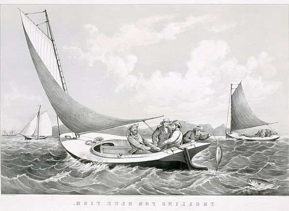 Fischer Angling Sailing Boats Fishing Sail Navigat