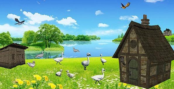 Ducks Dears Landscapes Scenery Nature See Understa