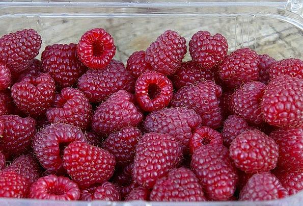Raspberries Landscapes Nature Harvest Crop Berries