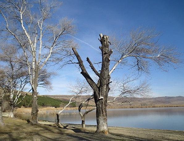 Tbilisi Landscapes Nature Georgia Lisi Lake Enviro