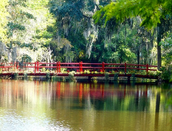Red Bridge Swamp Marsh Spanish Moss Pond Pool Wate