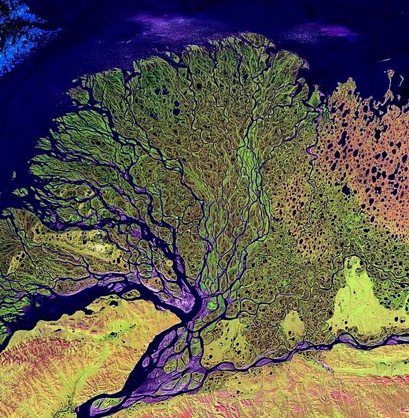 Aerial View Satellite Photo Satellite Image Laptev