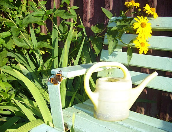 Watering Can Casting Molding Irrigation Garden Plo