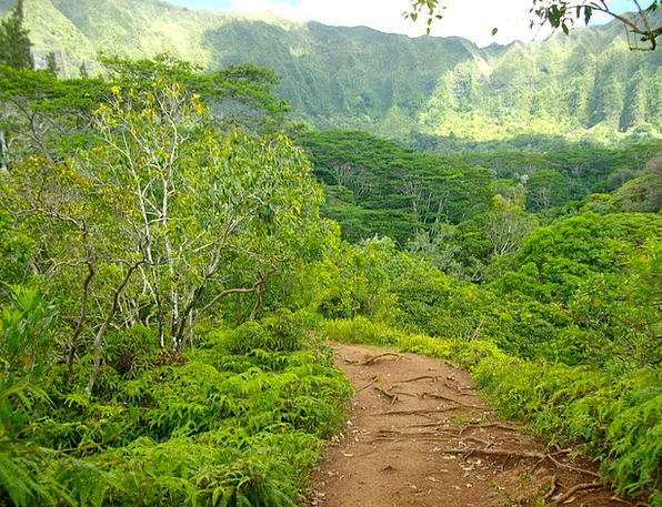 Hawaii Landscapes Mountaineering Nature Path Hikin