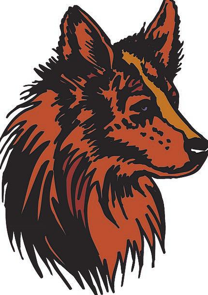 Head Skull Bloodshot Animal Physical Red Fur Hair