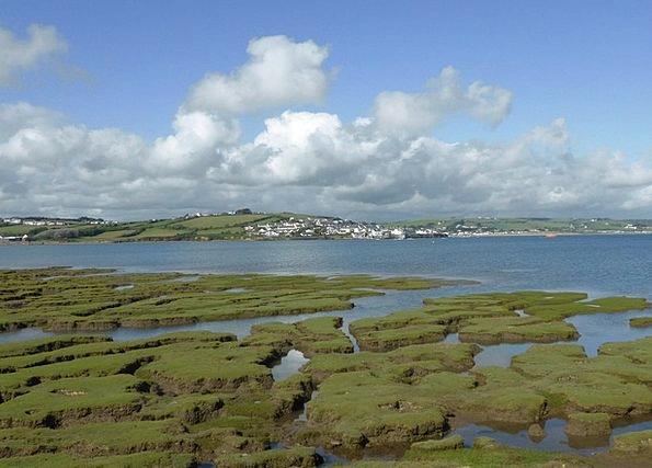 England Landscapes Current Nature River Stream Tid